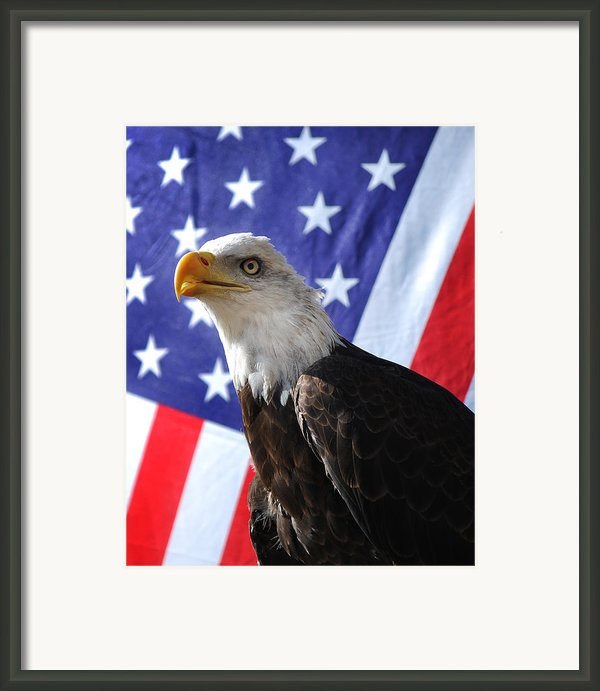 God Bless Our Heros Framed Print By Adele Moscaritolo