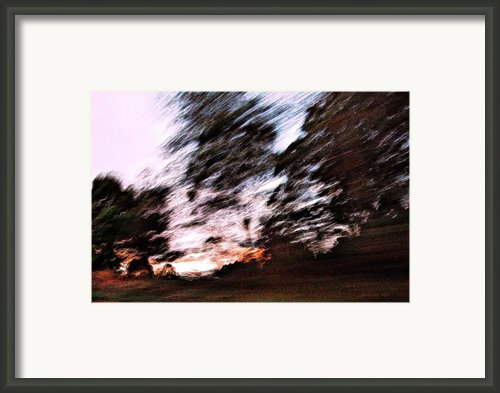 Going Home Framed Print By Sarah  King