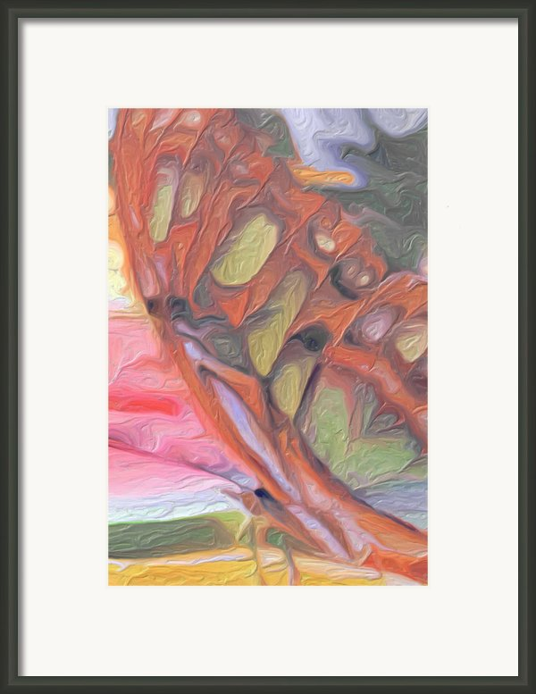 Gold Butterfly Paintng Abstract Framed Print By Don  Wright