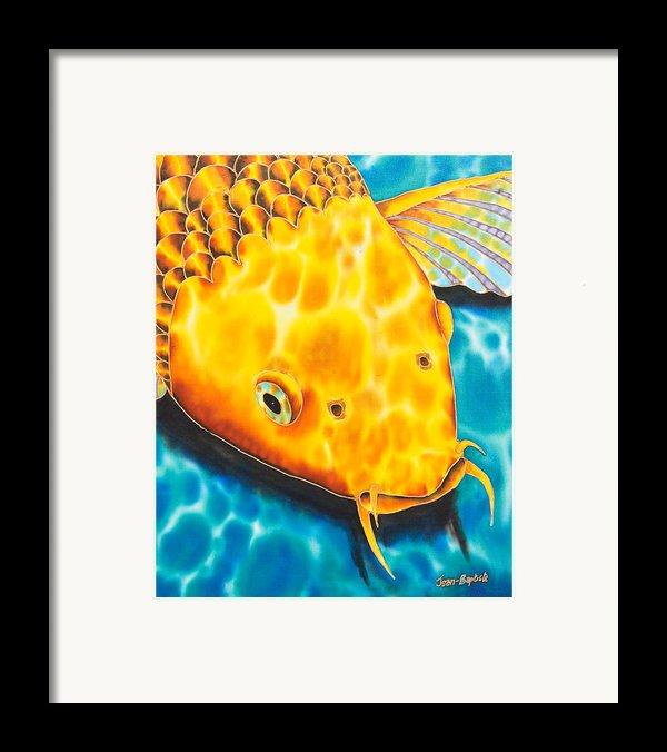Golden Koi Framed Print By Daniel Jean-baptiste