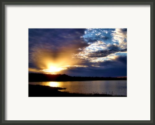 Golden Moment Framed Print By Karen M Scovill