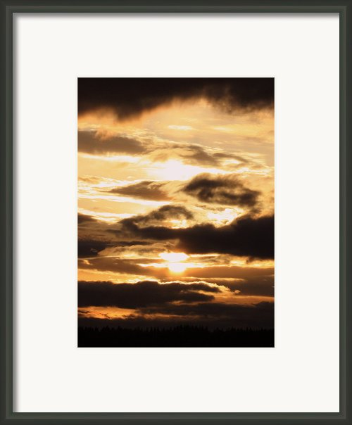 Golden Sunset Framed Print By Carol Groenen