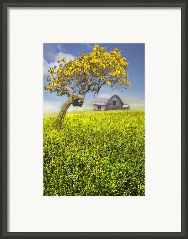Good Morning Spring Framed Print By Debra And Dave Vanderlaan