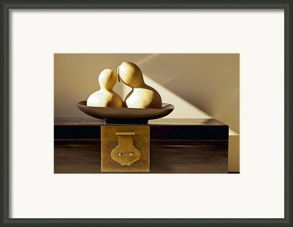 Gourds Still Life Ii Framed Print By Kyle Rothenborg - Printscapes