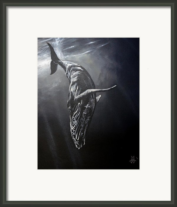 Graceful Descent Framed Print By Marco Antonio Aguilar