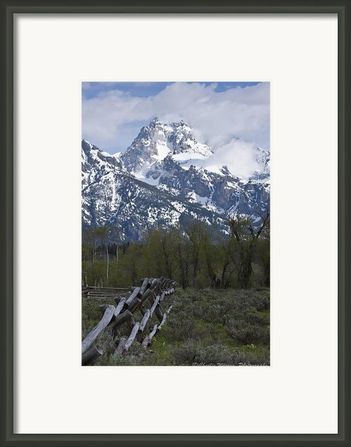 Grand Teton Fence Framed Print By Charles Warren
