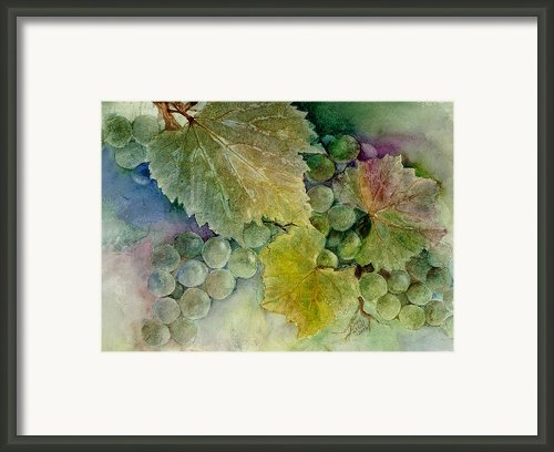 Grapes Ii Framed Print By Judy Dodds