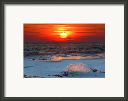 Grayton Beach Sunset Iii Framed Print By Charles Warren
