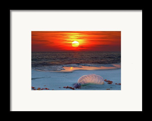Grayton Beach Sunset Iii Framed Print By Charles Warren