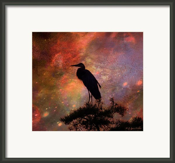 Great Blue Heron Viewing The Cosmos Framed Print By J Larry Walker