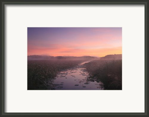 Great Meadows National Wildlife Refuge Dawn Framed Print By John Burk