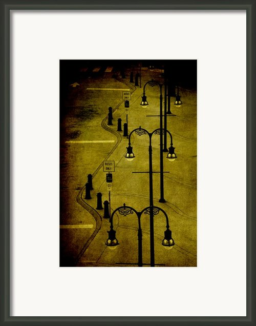 Green Light Framed Print By Susanne Van Hulst