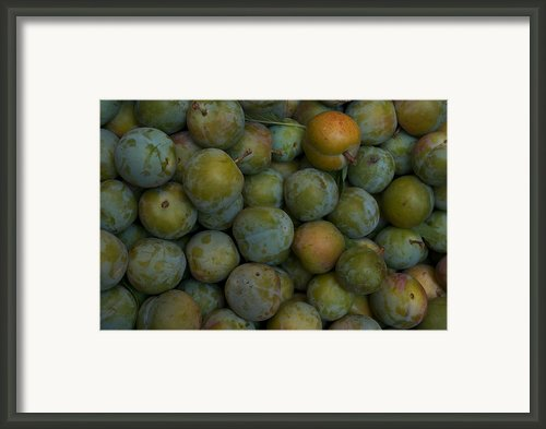 Green Plums Fill A Bin Outside A Local Framed Print By Heather Perry