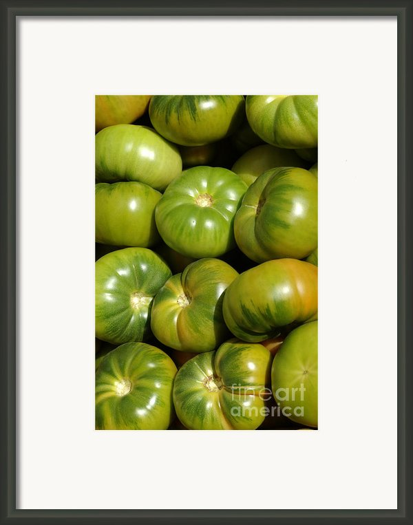 Green Tomatoes Framed Print By Frank Tschakert