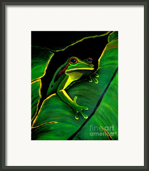 Green Tree Frog And Leaf Framed Print By Nick Gustafson