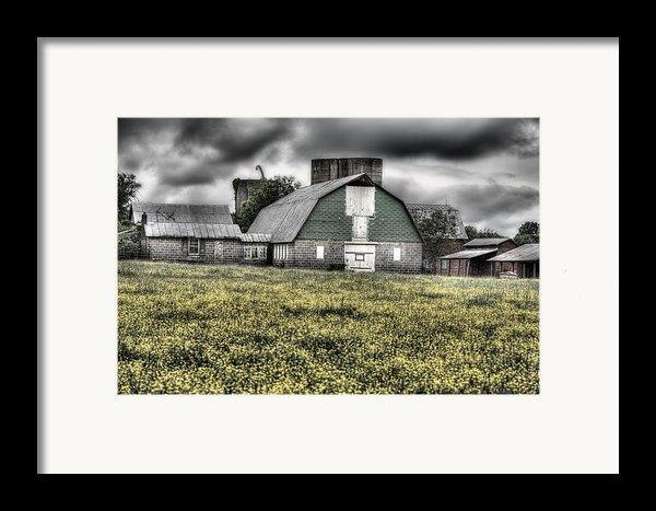 Grey Scale Framed Print By Jc Findley