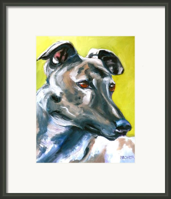Greyhound Framed Print By Susan A Becker