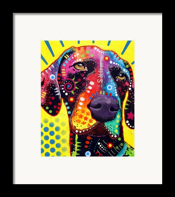 Gsp German Shorthair Pointer Framed Print By Dean Russo