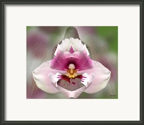Guardian Framed Print By Torie Tiffany