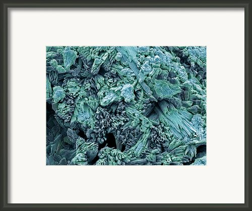 Gypsum Crystals, Sem Framed Print By Steve Gschmeissner