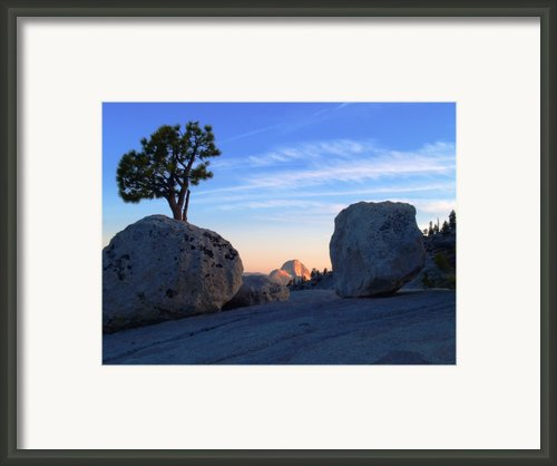 Half Dome At Olmsted Point - Yosemite Framed Print By Mark Wilburn