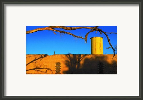 Hand Picked Framed Print By Skip Hunt