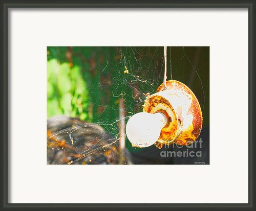 Hanging By A Web Framed Print By Cheryl Young