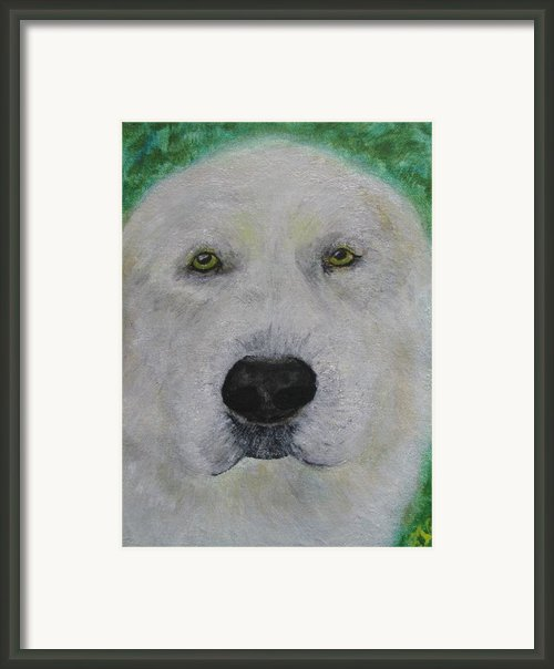 Hanmee 1 Framed Print By Barbara Giordano