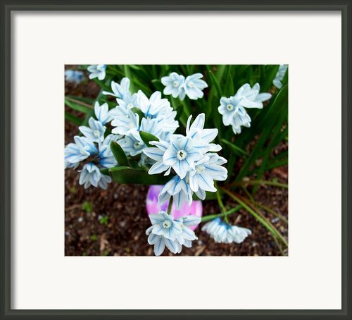 Happy Easter I Framed Print By Kevin D Davis