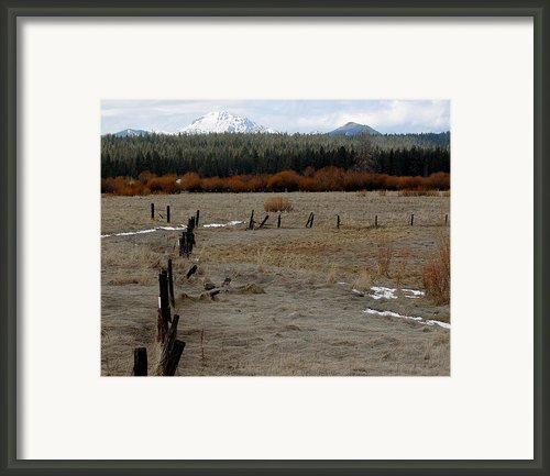 Happy Trails Framed Print By Lydia Warner Miller