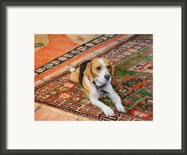 Harley Framed Print By Debra Jones