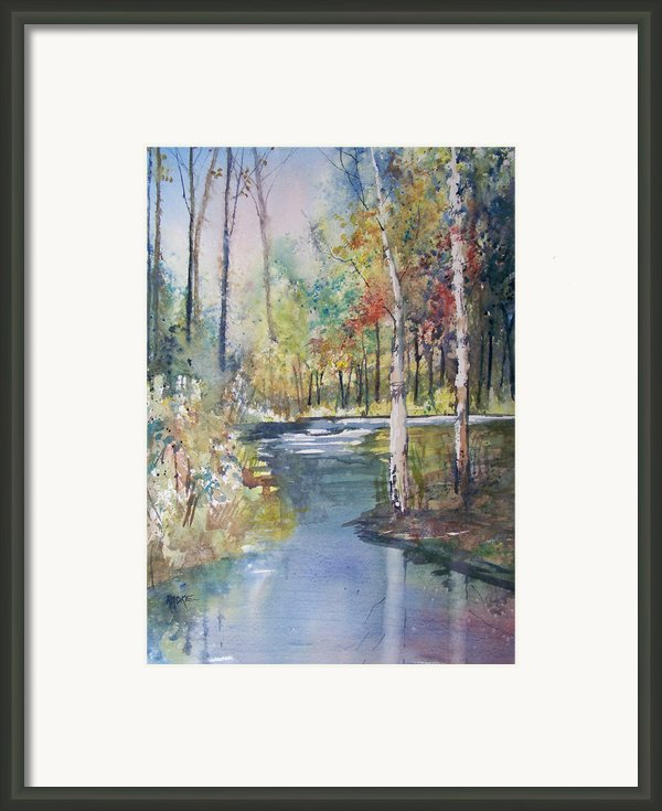 Hartman Creek Birches Framed Print By Ryan Radke