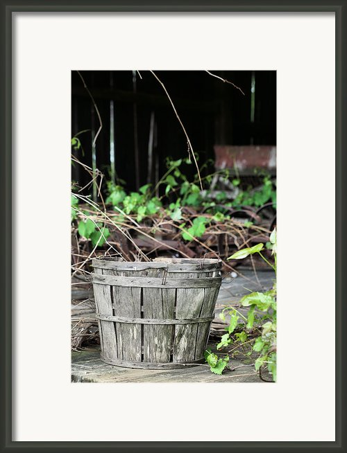 Harvest Time Framed Print By Jc Findley