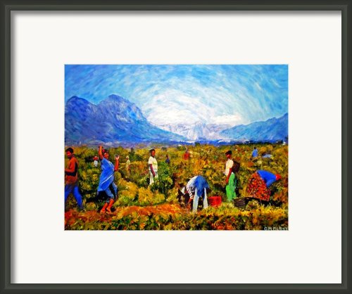 Harvest Time Framed Print By Michael Durst