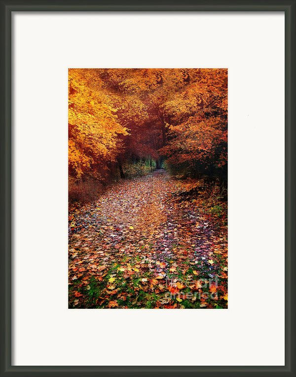 Have A Little Faith Framed Print By Photodream Art