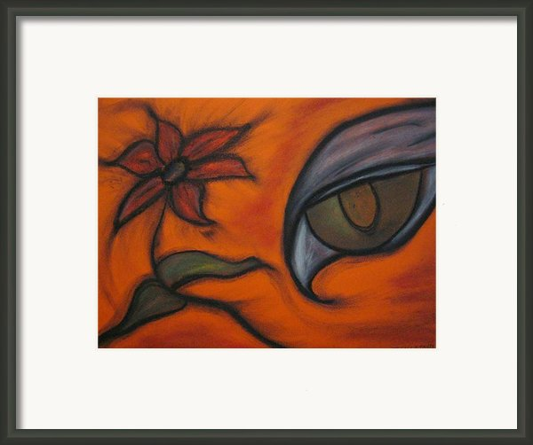 Hawk Eye Enchantment Framed Print By Tracy Fallstrom