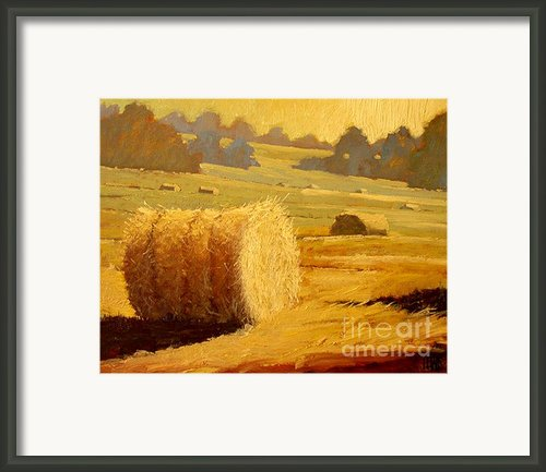 Hay Bales Of Bordeaux Framed Print By Robert Lewis
