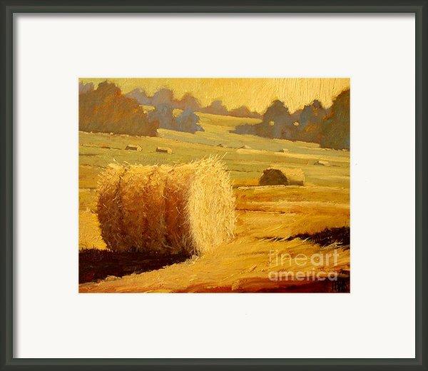 Hay Bales Of Bordeaux Framed Print By Robert Lewis