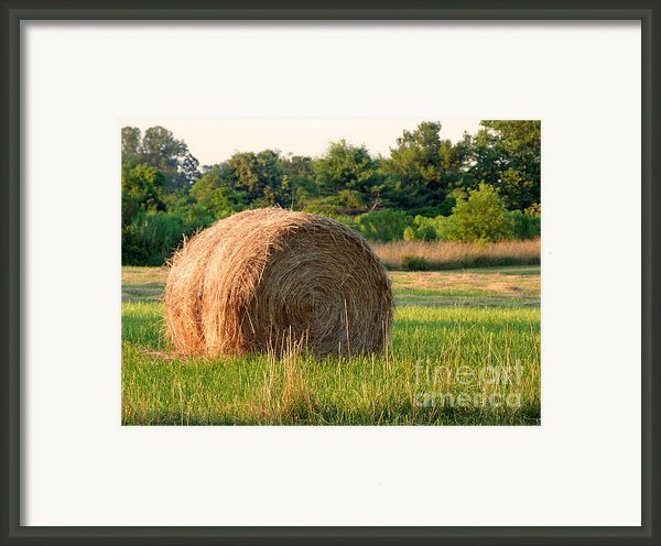 Haybale Framed Print By Louise Peardon