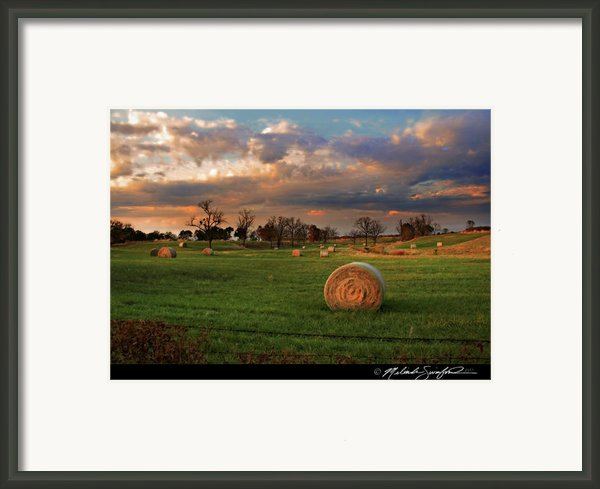 Haybales At Dusk Framed Print By Melinda Swinford