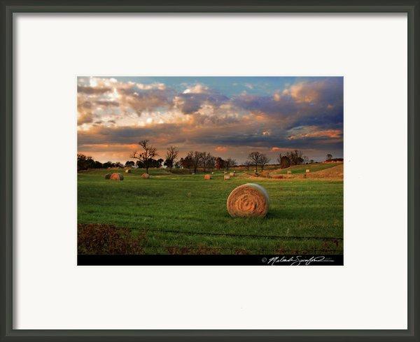 Haybales At Dusk Framed Print By Melinda Swinford