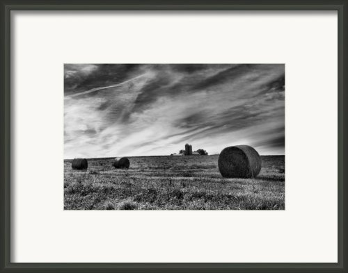 Hayrolls And Field Framed Print By Steven Ainsworth