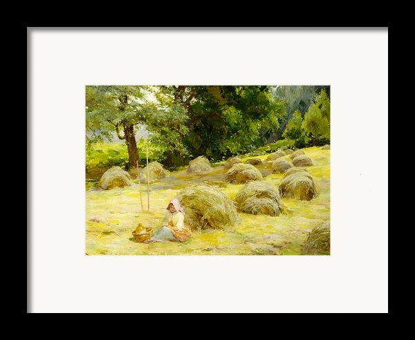 Haytime Framed Print By Rosa Appleton
