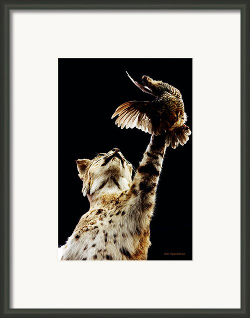 He Got Away Framed Print By Didi Higginbotham