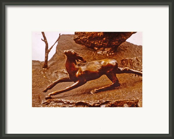 He Who Saved The Deer - Deer Detail Framed Print By Dawn Senior-trask