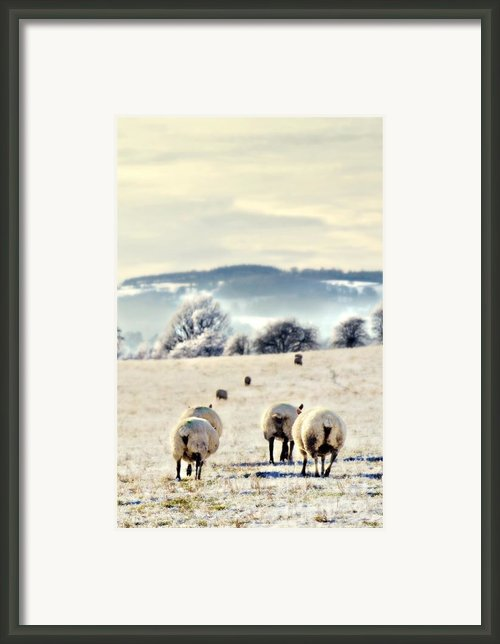 Heading Home Framed Print By Meirion Matthias