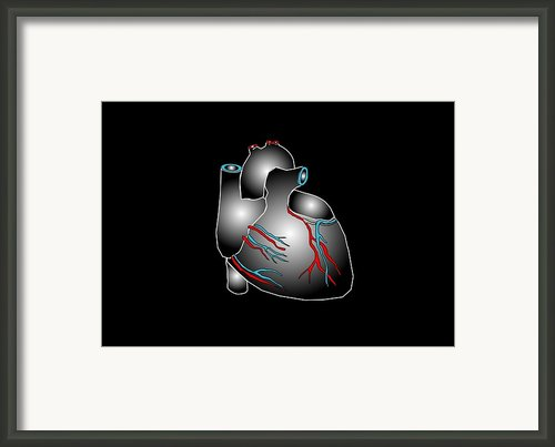Heart Anatomy, Artwork Framed Print By Francis Leroy, Biocosmos