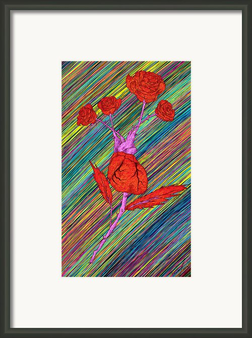 Heart Made Of Roses Framed Print By Kenal Louis