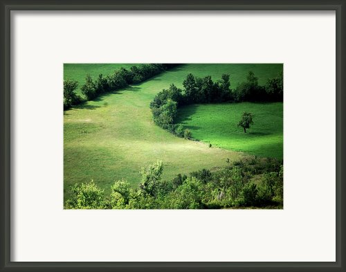 Hedged Farmland Framed Print By Photo Marylise Doctrinal