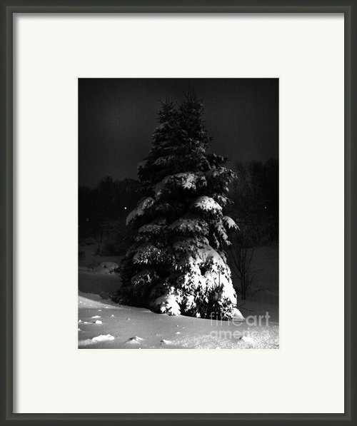 Hello Winter Framed Print By Lj Lambert
